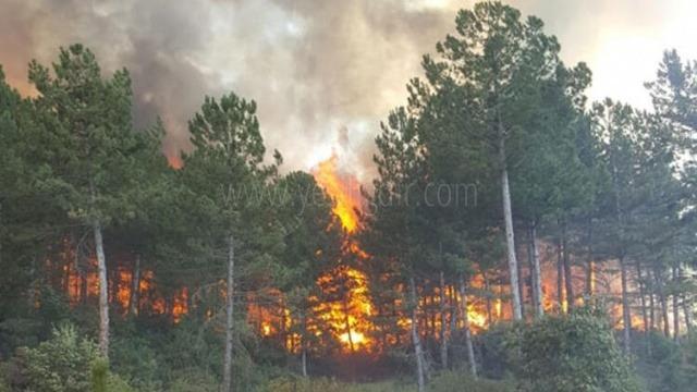 İçişleri Bakanlığından, 81 il valiliğine 'Orman Yangınları' konulu genelge