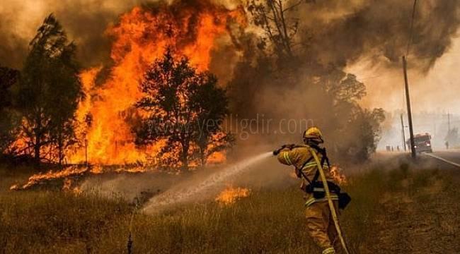 """Türkiye'de çıkan orman yangınlarla ilgili Diaspora ile İş üzere Devlet Komitesi'nde """"yardım hattı"""" oluşturulmuştur."""