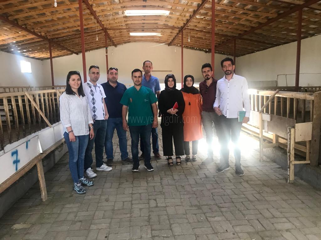 Veteriner Hekimler'den  Koyun Çiftliğine Ziyaret