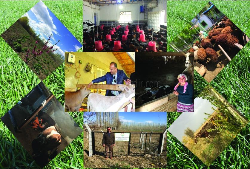 Iğdır Gıda Tarım ve Hayvancılık İl müdürlüğünde büyük hizmet