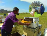 Arı İle Gelen Refah Projesi