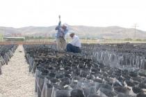 'Çiftçi Eğitim Merkezi' Kuruldu