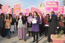Iğdır'da Kadına Şiddet Günü protesto edildi