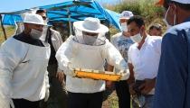 Organik Arıcılık Desteklenmesi Başladı