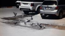 Iğdır'da Susuz  Kalan Güvercinlere Esnaf Sahip Çıktı