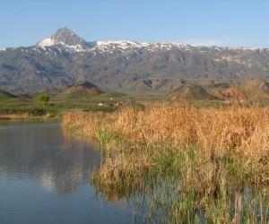 Kars-Igdir-Aras-Nehri-Kus-Cenneti-IMG_0275.jpg
