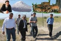 Ağrı Dağında 150 Ceylan Doğaya Bırakılacak